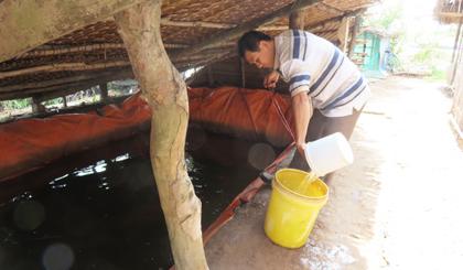 Người dân ấp Cồn Cống, xã Phú Tân vẫn chưa có được nguồn nước sạch để sử dụng.