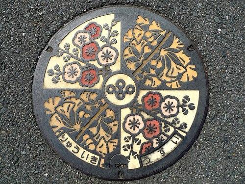 Hiện nay, hầu hết nắp cống ở các thành phố của Nhật Bản đã được khoác trên mình biểu tượng của quê hương.
